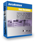 20% Off DataNumen Data Recovery Coupon