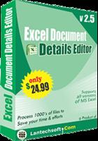 Excel Document Details Editor – Premium Discount
