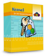 Kernel Data Recovery Kernel VBA Password Recovery – Home License Coupon