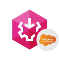 15% off – SSIS Data Flow Components for Salesforce Marketing Cloud