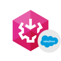 15% – SSIS Data Flow Components for Salesforce