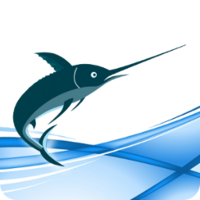 Maxprograms – Swordfish Translation Editor – Site License (20 users) Coupon Deal