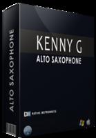 Unique VST Kenny G Alto Saxophone Coupon Sale