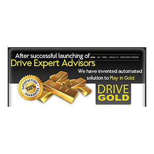 Drive Gold 3 Licenses Coupon