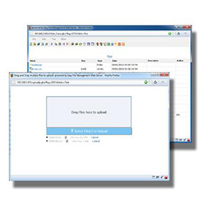 EFS Software Inc. Easy File Management Web Server (30 users license) Discount