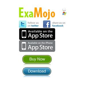 ExaMojo Company