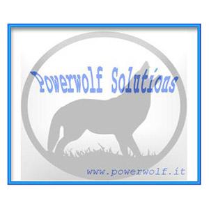 Powerwolf Software