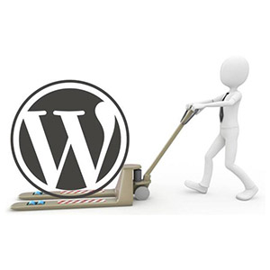 WordPress Helpr