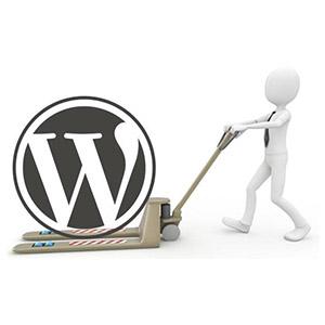 WordPress Helpr